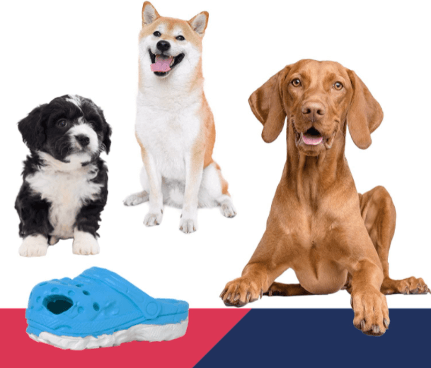 Amazon: Cute Slippers, Dog Chew Toys for $9.49 (Reg. $18.99)
