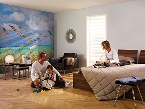 (Amazon) Brewster 8-515 Komar Wall Mural with Paste Ocean Breeze, 12-Foot 1-Inch by 8-Foot 4-Inch